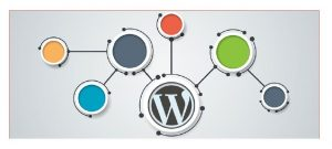 wordpress -multiwebsite